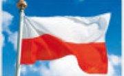 Żywa lekcja historii w Sukowie. Uczniowie upamiętnili partyzantów